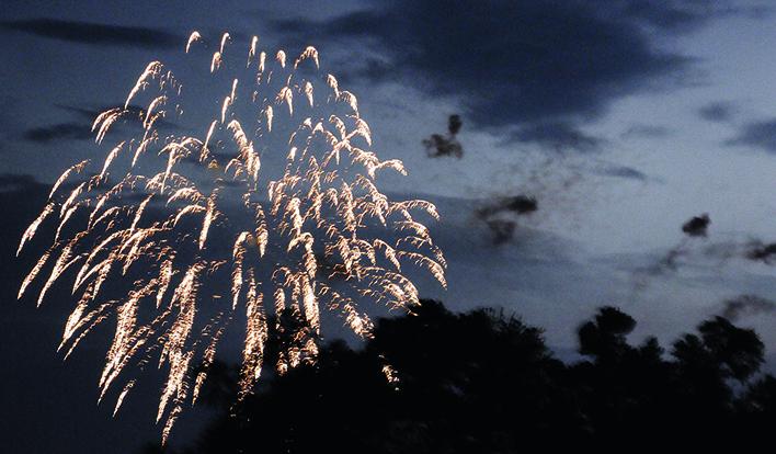 Fireworks Treeline