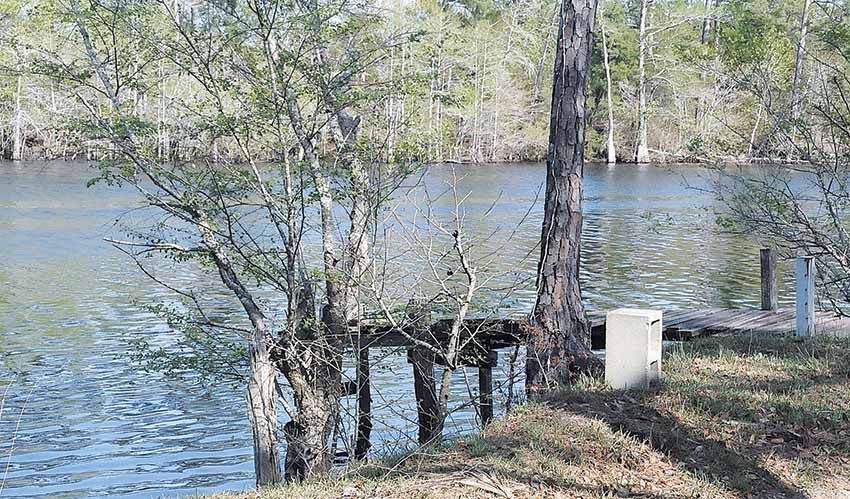 Waccamaw River View 2012